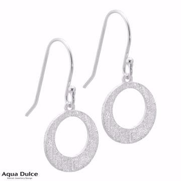 Aqua Dulce ørering